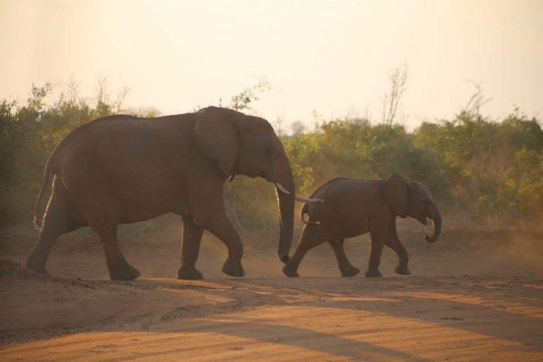 Kenia-Reisebericht-Nadine-Hiden-Have-big-dreams-Reisetipps107
