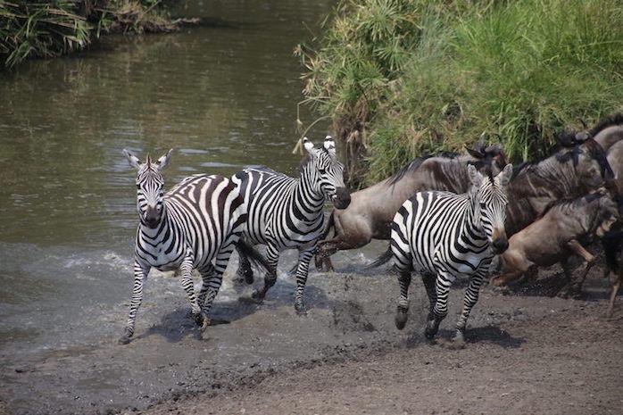 Kenia-Reisebericht-Nadine-Hiden-Have-big-dreams-Reisetipps24