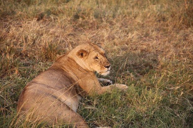 Kenia-Reisebericht-Nadine-Hiden-Have-big-dreams-Reisetipps43