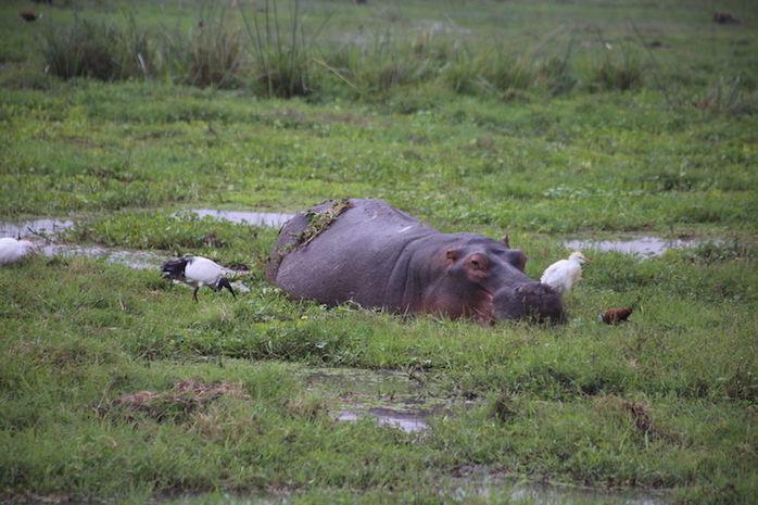 Kenia-Reisebericht-Nadine-Hiden-Have-big-dreams-Reisetipps57