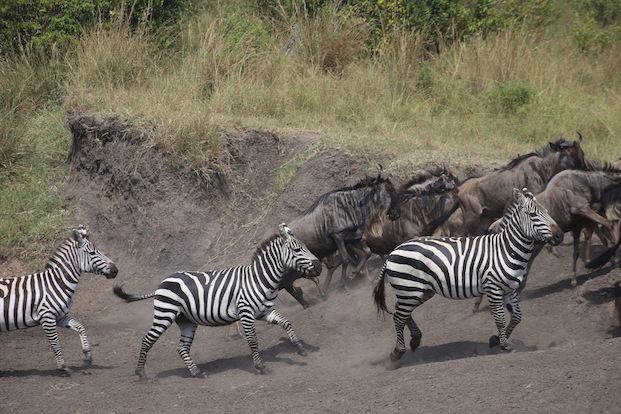 Kenia-Reisebericht-Nadine-Hiden-Have-big-dreams-Reisetipps69