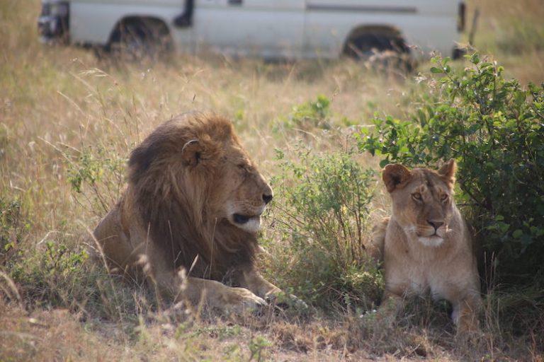 Kenia-Reisebericht-Nadine-Hiden-Have-big-dreams-Reisetipps7