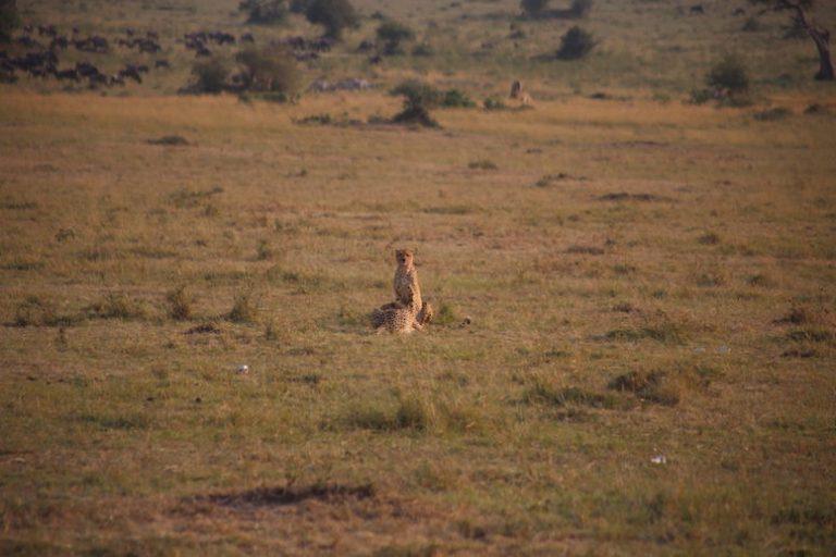 Kenia-Reisebericht-Nadine-Hiden-Have-big-dreams-Reisetipps72
